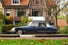 1973 Citroën DS 23 Injection Pallas (rvandermaar) Tags: 1973 citroën ds 23 injection pallas citroends citroënds citroen 55ya30