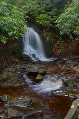 Shooters Clough, Goyt Valley (philept1) Tags: water errwood outdoors peakdistrict waterfall derbyshire goyt hall countryside valley nationalpark longexposure groto