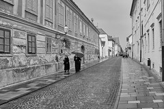 DSCF1251 (andreas.motzkus) Tags: bw flickr urlaub2019 city varazdin country croatia