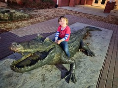 Crocodile Cowboy (Pejasar) Tags: oklahoma jenks oklahomaaquarium rider crocodile cowboy grandson