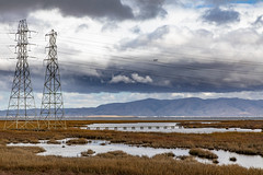 Winter Storms on the Baylands (Jill Clardy) Tags: baylands california northamerica paloalto savethebay usa winter 201912079l8a1005 marshland marshes storm stormy clouds cloudy power pylons