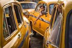 TAXI DRIVER. Kolkata (Cathy Le Scolan-Quéré Photographies) Tags: kolkata taxi womenstreetphotographers driver india yellow calcutta