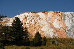 Mammoth Hot Springs 1 (Amaury Laporte) Tags: geothermal geothermalfeatures mammoth mammothhotsprings nationalpark nature northamerica usa unitedstates wyoming yellowstone