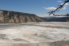 Desolate White Flats 2 (Amaury Laporte) Tags: geothermal geothermalfeatures mammoth mammothhotsprings nationalpark nature northamerica usa unitedstates wyoming yellowstone