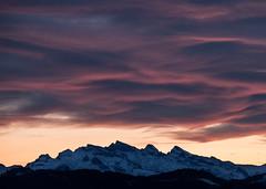 Day 37 (Diueine) Tags: nikon d850 tamron g2 150600mm landscape zurich switzerland