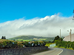 weather ahead (ekelly80) Tags: azores sãomiguel portugal november2019 drive road street curve hydrangeas flowers colors clouds weather rain sky