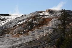 Palette Spring Fuming 2 (Amaury Laporte) Tags: geothermal geothermalfeatures mammoth mammothhotsprings nationalpark nature northamerica usa unitedstates wyoming yellowstone