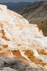 Mammoth Hot Springs Terrace 1 (Amaury Laporte) Tags: geothermal geothermalfeatures mammoth mammothhotsprings nationalpark nature northamerica usa unitedstates wyoming yellowstone