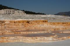 Mammoth Hot Spring Terraces 1 (Amaury Laporte) Tags: geothermal geothermalfeatures mammoth mammothhotsprings nationalpark nature northamerica usa unitedstates wyoming yellowstone