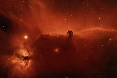 Horsehead and Flame Nebulae in Hydrogen Alpha (rex.on.life) Tags: nebula horsehead flame astrophotography astronomy virginia richmond zwo astrotech longexposure universe