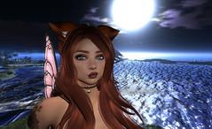 moonlight fae (KatianaKitten) Tags: secondlife sl sweetthing avatar catwa catwanour maitreya magika catgirl moonlight wings fae fairy faerie virtual headshot
