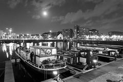 Moonlit Salthouse Dock (3996), b&w. (liverpix) Tags: royal albert dock
