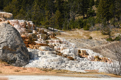 Palette Spring Hot Spring 04 (Amaury Laporte) Tags: geothermal geothermalfeatures mammoth mammothhotsprings nationalpark nature northamerica usa unitedstates wyoming yellowstone