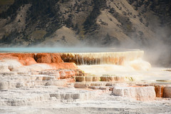 Canary Spring 2 (Amaury Laporte) Tags: geothermal geothermalfeatures mammoth mammothhotsprings nationalpark nature northamerica usa unitedstates wyoming yellowstone