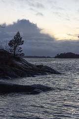 Windy and cold day (jannaheli) Tags: suomi finland helsinki laajasalo nikond7200 nature naturetherapy naturephotography naturephotoshooting outdoor visitfinland visithelsinki