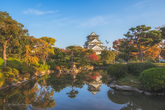 Osaka castle, Japan (FollowingNature (Yao Liu)) Tags: reflection castle birds japan fallfoliage osaka ponds osakacastle followingnature nikon nikonusa