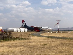 Coulson C-130 Hercules N134CG very large air tanker at Canberra Airport being prepared for a retardant drop over the Tallaganda State Forest fire (sarracenia.flava) Tags: ruralfireservice nsw canberraairport tallagandastateforest verylargeairtanker vlat airplane hercules c130hercules