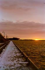 Kodak Morning (Uta_kv) Tags: filmmagic filmisgod ishootkodak magichour goldenhour f2 nokia kodak filmphotography c41 nokiaf2 colorplus200 35mm film homedeveloped