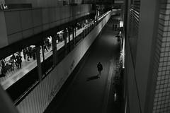 Alone (Architecamera) Tags: monochrome blackwhite blackandwhite snap street people d750 shinjuku