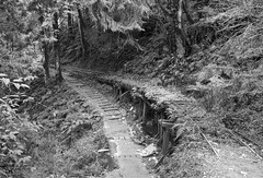 Bong Bong B&W (Rob McC) Tags: bnw blackandwhite monochrome rail infrastructure bong historical derelict