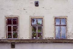 Three-eye face. The view inside remains hidden. (Gudzwi) Tags: dreiaugengesicht verborgen fassade verfall zerfall decay brökeln abblättern farbe holz fenster drei spiegelung blickinsinnere haus hauswand wand zimmerpflanzen gardinen wieaugen stadt stadtansichten städtisch thüringen weimar deutschland threeeyeface hidden facade expiration disintegration peel colour wood window three reflection lookinside house housewall wall houseplants curtains likeeyes city cityscapes urban thuringia germany mittwochsfenster mittwochswand wednesdaywindows wednesdaywalls windowwednesdays