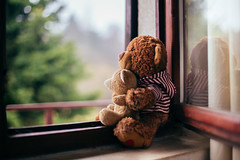 The home is still out there (Inka56) Tags: teddybear toy toys teadybears window bokeh