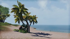 Beach (Argus Fanis) Tags: eso reshade scenery screenshot