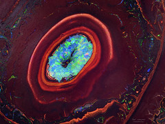 opalized jupiter storm (Olaf Traumflieger) Tags: opal nuss nut stacking makro macro focus country alsen