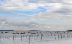 Sur le bassin d'Arcachon (balese13) Tags: 100nikon 1855mm arcachon d5000 gironde nikonpassion yourbestoftoday balese bassin bateau bleu blue boat ciel cloud dune dunedupilat eau nikon nikonistes nuage paysage pixelistes water 250v10f 500v20f 1000v40f 1500v60f
