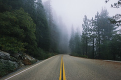 Leaving Yosemite for the Sequoia Forest... (Ida H) Tags: america yosemite usa sequoiaforest kingscanyon road roadtrip travel journey camping nature outdoors adventure landscape fog foggy mist misty leadinglines freedom travelling nikond810 nikon sigmaart 24mm
