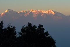 Alone with my sunset. (draskd) Tags: sunset himalayas trek forest mountain sun tree uttarakhand draskd landscape kumaon trishul mrigthuni maiktoli