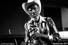 Tail Dragger (Joe Herrero) Tags: concierto concert blues bolo gig directo live music