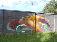 177 (en-ri) Tags: uomo man giallo verde grigio bianco viola savigliano wall muro graffiti writing cuneo