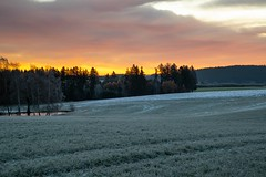 Sunrising over the wood (Burnett0305) Tags: bavaria bayern frost grün himmel konradsreuth landkreishof landscape landschaft landschaftnatur morgen natur nature nikonafs24120mmf40vr nikond850 orange rot schnee sky snow sonne sonnenaufgang sun sunrise wald wiesenundfelder winter country countryside forrest frozen gelb green hell light morning outside red sunlight weis white wood woods