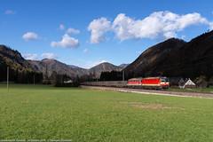 Fuga dalle tenebre (Damiano Piovanelli) Tags: pyhrnbahn obb öbb 1144117 ferrovie bahn pyhrn österreichischebundesbahn österreich