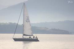 La bahía (therlo28) Tags: niebla fog bahía agua velero blaco suave paisaje tranquilidad santander navegar pesca