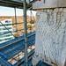 belltower_scaffolding-15911