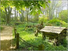Lovely Woodland Walk .. (** Janets Photos **) Tags: uk eastyorkshire burnbyhall pocklington publicgardens