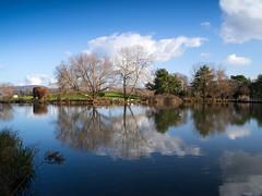 Merian Gardens 10-12-2019 008 (swissnature3) Tags: garden park switzerland basel münchenstein