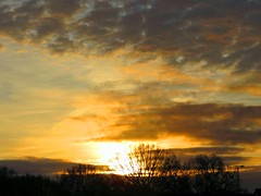 07Dec19 Sunrise2 (Daisy Waring World) Tags: sky clouds yellow sunrise treelinesilhouette