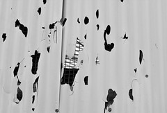 HolyWall (Tony Tooth) Tags: nikon d7100 sigma 70mm wall corrugation abstract holes kidsgrove staffs staffordshire bw blackandwhite monochrome