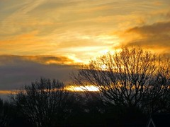07Dec19 Sunrise1 (Daisy Waring World) Tags: sky clouds yellow sunrise treelinesilhouette