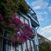 The Most Beautiful Apartment on Lombard Street? - San Francisco, California