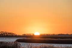 Good morning (moritz k.) Tags: mecklenburgvorpommern mecklenburgwesternpomerania bodden kirr morning sunrise winter zingst