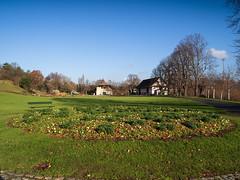 Merian Gardens 10-12-2019 001 (swissnature3) Tags: garden park switzerland basel münchenstein