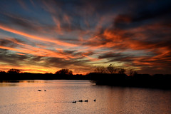 Streaky Sunset with Ducks (NaturalLight) Tags: sunset cirrus clouds ducks water reflections chisholmcreekpark wichita kansas