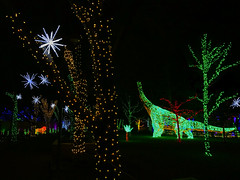 Trees at River of Lights, and dinosaur too! (johngpt) Tags: trees riveroflights festivalgreen lions appleiphone7plus dinosaur places abqbotanicgardens treemendoustuesday htmt