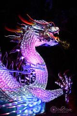 Porcelain Dragon-Magnolia Gardens (glasskunstler) Tags: charleston night lights traveling display dragon china historic dinnerware massive magnoliagardens oaks atmospheric