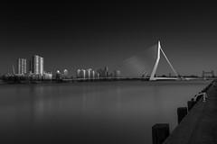 Erasmus 3 (paulantony2) Tags: bridge city architecture river rotterdam cityscape monochrome blackandwhite longexposure