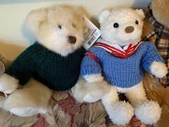What IS that On Your Ear?! (BKHagar *Kim*) Tags: bkhagar bear animal toy stuffed teddy teddybear estatesale htbt waitingforadoption happyteddybeartuesday